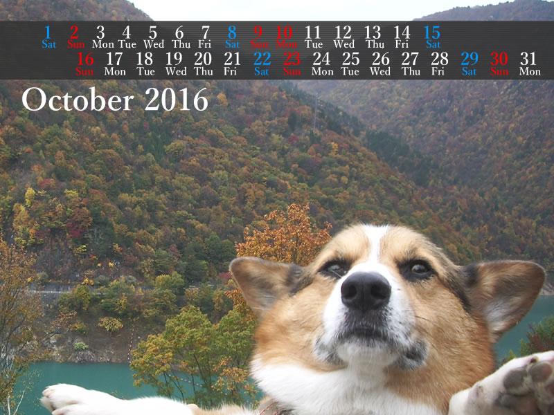 201610_800_600.jpg